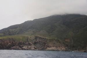 本村の少し南にある岬は緑の山が降灰に覆われていました。