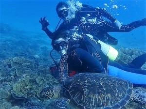 Love Turtle♡