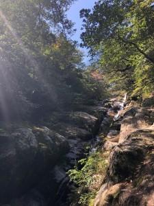 白谷雲水峡入ってすぐ左手に見える景色