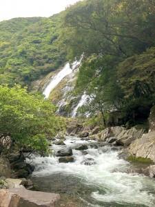 大川の滝から流れる水