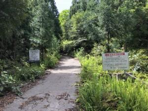 龍神杉に続く登山口への道。自然公園から3.5km。