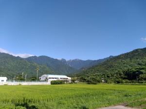 永田を走ってる時の風景。