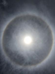 ランチ中に見上げると・・・太陽の周りに虹色の輪っか!ハロ現象というらしいです。