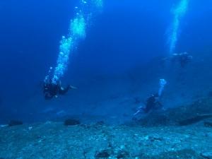 久しぶりに永田の海へ潜れました-!どこまでも青い☆