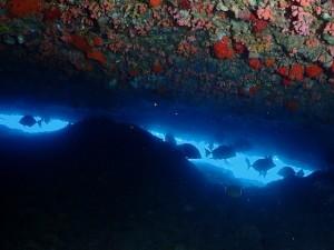 穴をくぐると海の青が映えますー♪