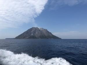 モニタリング1000。サンゴ調査で三島へ行って来ました-!
