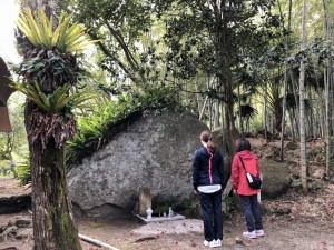 花崗岩の自然巨石面。